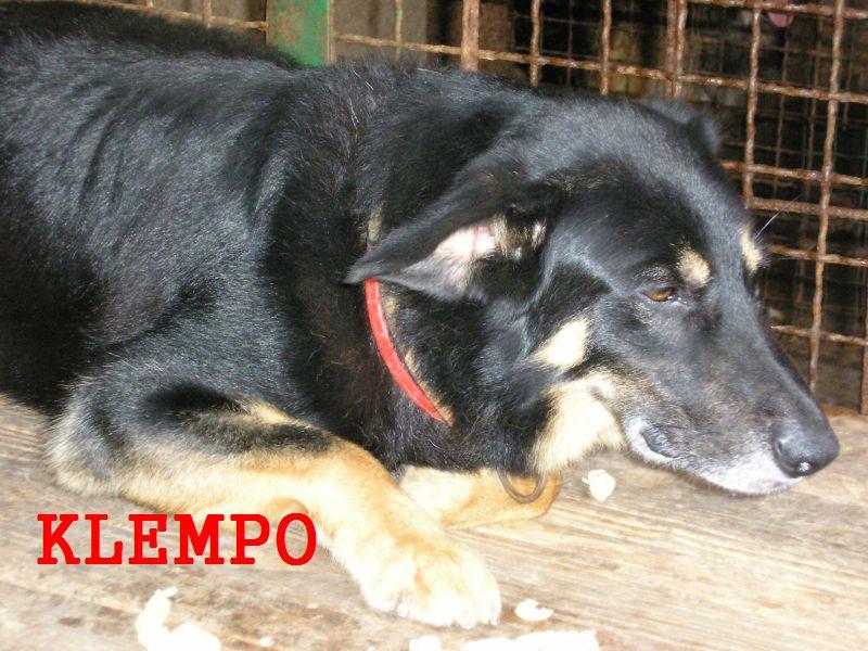 KLEMPO3.jpg