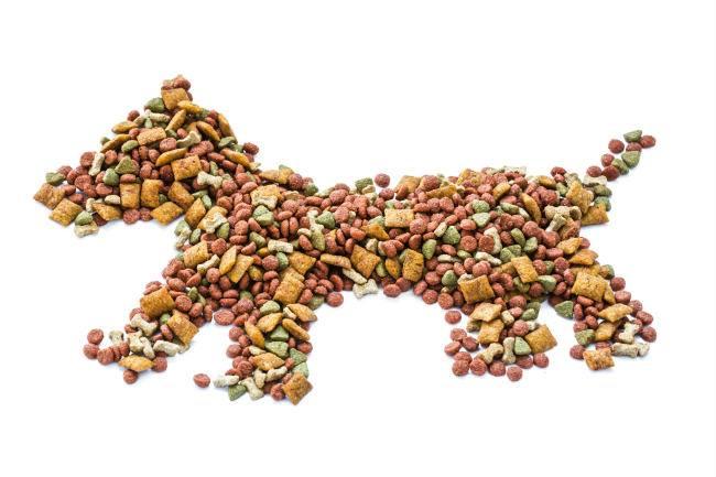Hund aus Trockenfutter.jpg