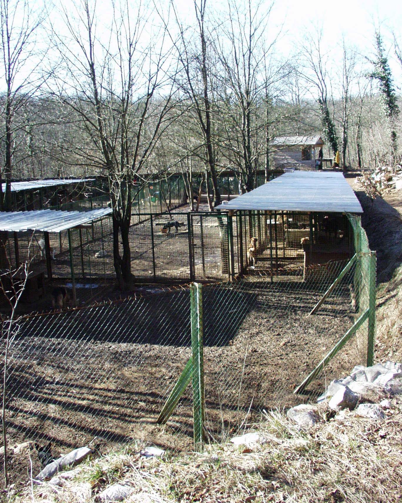 shelter 2003..jpg