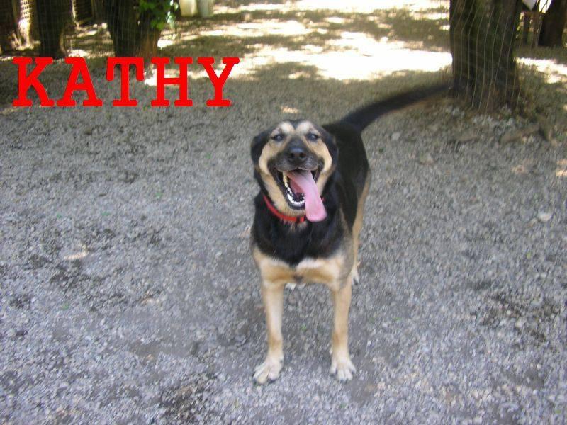 Kathy (Reserviert)